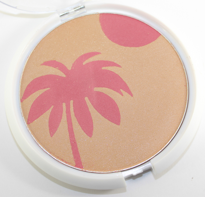 wet n wild hold me close bronzer blush